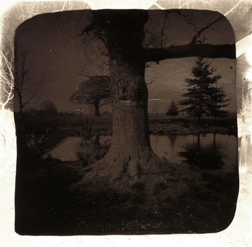 David Gates 'Bark' silver gelatin and bitumen on cardboard, 28×28.5cm/11×11.4in (unique) 2012